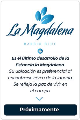 Barrio_blue_white